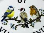 Aviary Bird Sign