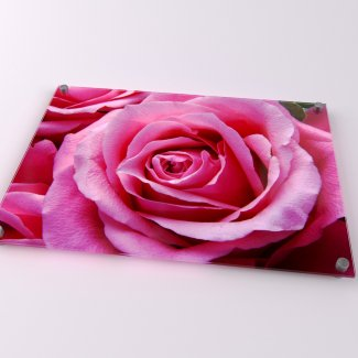 Rose Acrylic Print - Available in A1-A4
