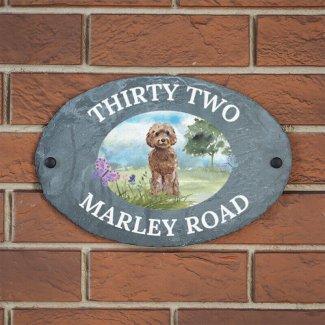 Marley on Slate  (70+ dog breeds)