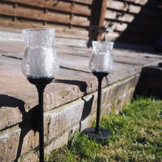 Tulip Solar Lights
